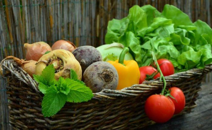 Tipos de hortalizas